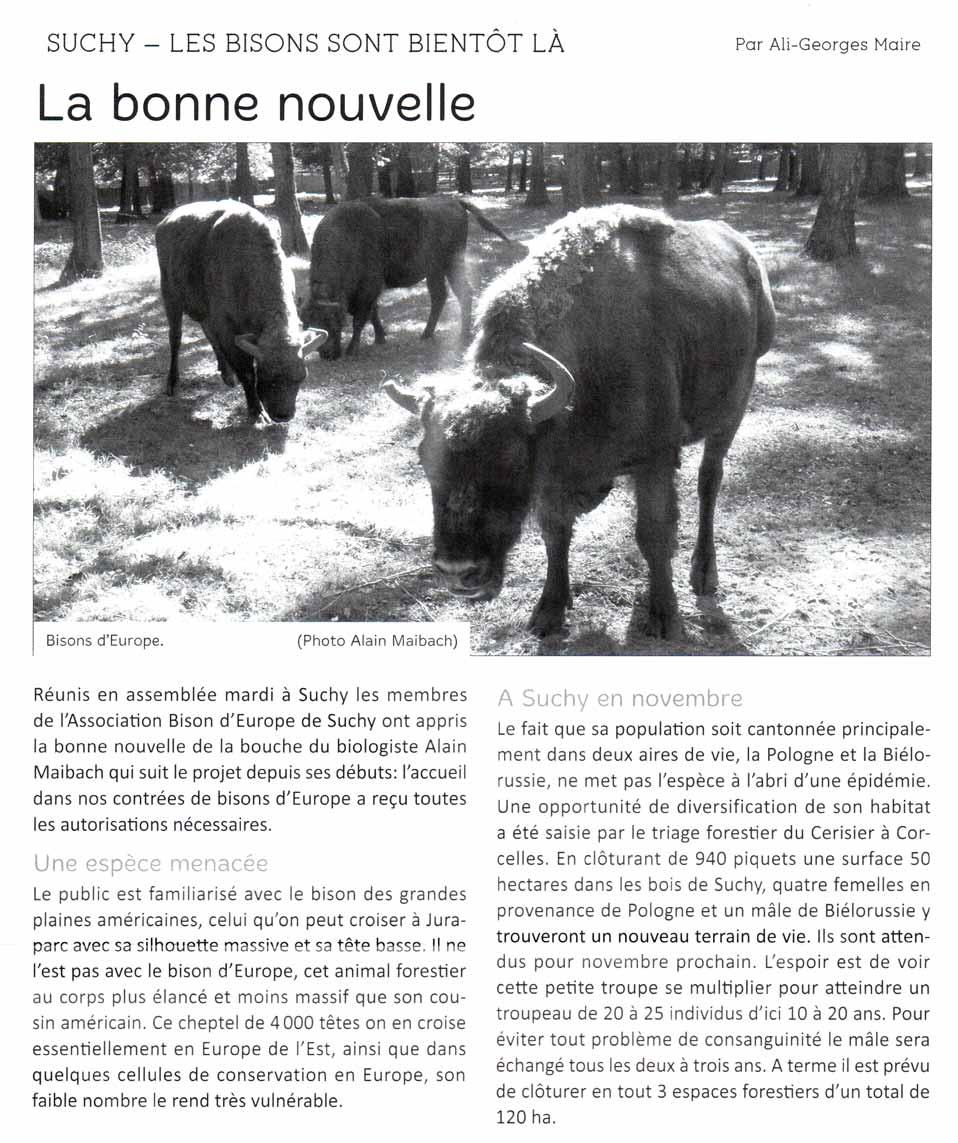 L'Omnibus : Suchy – Les bisons sont bientôt là